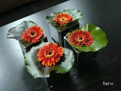 Table decoration in simple style - Gerbera on galax leaf Small Flower Arrangements, Small Flowers, Beautiful Flowers, Deco Floral, Arte Floral, Corporate Flowers, Small Centerpieces, Deco Table, Decoration Table