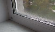 Вот как избавиться от КОНДЕНСАТА на пластиковых окнах http://bigl1fe.ru/2016/12/05/vot-kak-izbavitsya-ot-kondensata-na-plastikovyh-oknah/