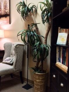Setting up your psychotherapy office can be exciting and fun, but it's also serious business. If you have followed my blog for a while, you know I moved into a new office last year and recently updated the office arrangementfor the better. While the most important factor for successful therapy is the therapist-client relationship, I …