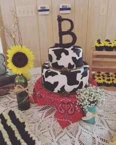 Another cake creation by the talented This time it was a cow print cake (with red velvet inside ) for graduation party. Cow Print Birthday, Cow Birthday Cake, Cow Birthday Parties, Cowboy Birthday, 1st Boy Birthday, Horse Birthday, Birthday Ideas, Cow Print Cakes, Cow Cakes