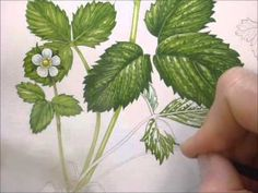 Botanical Illustration of a Wild Strawberry by Lizzie Harper - YouTube
