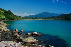 daintree coast, northern Australia where my family and I lived for many years.