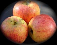 Æblesmør Peach, Foods, Homemade, Cream, Fruit, Food Food, Creme Caramel, Food Items, Home Made