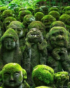 The coolest temple in Kyoto 1200 stone sculptures of rakan, BuddhYou can find Photography business and . Bon Plan Voyage, Road Trip, Destination Voyage, Buddhist Temple, Blog Voyage, Destinations, Japan Travel, Asia Travel, Happy Sunday