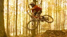 Shreds or Tails - Mountain Bike Woods