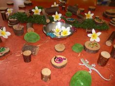 Just another display of natural items :)