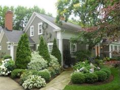 hostas, holly, boxwood - design layout idea for flowerbeds at entrance to drive