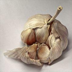 garlic - Antonio Rodriguez Maldonado