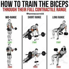 Gym Tips, Gym Workout Tips, At Home Workouts, Cardio Gym, Big Biceps Workout, Weight Training Workouts, Back And Biceps, Chest Workouts, Muscular