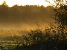 15-10-2012 - 100903106889959017428 - Picasa Web Albums