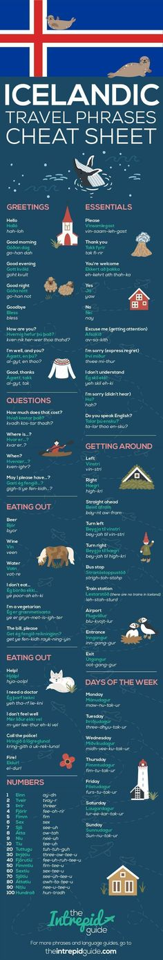 Common Icelandic Travel Phrases Infographic #EducationalInfographics #travelinfographic