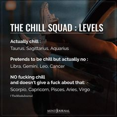 The Chill Squad Levels Of Each Zodiac Sign: Actually chill: Taurus, Sagittarius, Aquarius; Pretends to be chill but actually no: Libra, Gemini, Leo, Cancer; NO fucking chill and doesn't give a fuck about that: Scorpio, Capricorn, Pisces, Aries, Virgo