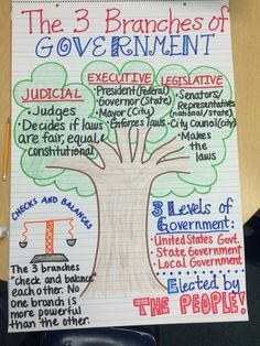 The 3 Branches of Government Anchor Chart describe the elements of representative democracy/republic in the United States. 3rd Grade Social Studies, Social Studies Classroom, Social Studies Activities, Teaching Social Studies, Teaching History, Student Teaching, History Education, History Classroom, Teaching Ideas