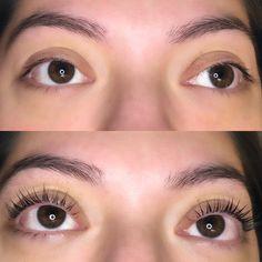 Eyelash Lift, Brows, Eyelashes, Perfect Eyelashes, Lash Extensions, Eyebrows, Lashes, Eye Brows, Brow
