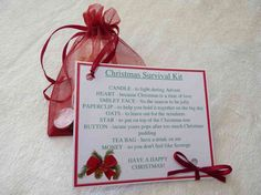 Christmas Survival Kit by TheWeeGemShop on Etsy Love Smiley, Peppermint Patties, Christmas Pudding, Paper Clip, Organza Bags, Tis The Season, Little Gifts, Best Gifts, Place Card Holders