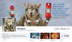 A collection of Elegant Facebook Timeline Cover Designs