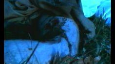 Secrets of the Dead II (2001): 3. Death at Jamestown Secrets of the Dead II : 3. Death at Jamestown (2001) - [56:22] (youtube.com)