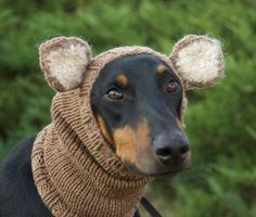 Knitted Dog Snood - warm and cute - with ears. $54,00, via Etsy.