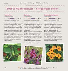 pflanzk bel um gem sepflanzen selbst vorzuziehen diy und selbermachen pinterest pflanzen. Black Bedroom Furniture Sets. Home Design Ideas