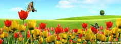 """Képtalálat a következőre: """"spring facebook cover photos"""""""