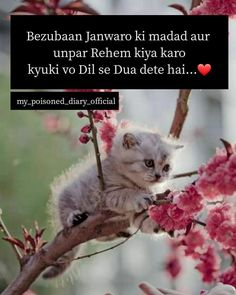 Best Islamic Quotes, Islamic Love Quotes, Islamic Inspirational Quotes, Karma Quotes, Reality Quotes, Funny Quotes, Dil Se, Love U Friend, Dosti Quotes