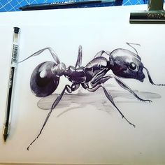 Working like an ant;) #art_spotlight #animaldrawing #artsgallery #artsy #art…