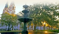 Savannah, GA...you can see the Cathedral of St. John the Baptist in the background; every Christmas we go to mass there...