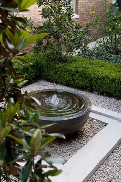 Love this water fountain photo. Like the use of a shorter pot.  desiretoinspire.net - Jewel boxgarden