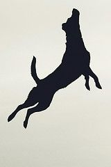 to be free (toxeh) Tags: silhouette flying labrador retriever blacklab soaring leaping dockdogs explored marioncountyfair Animal Silhouette, Labrador Silhouette, Silhouette Images, Puppy Room, Pet Hotel, Dog Logo, Stencils, Black Labrador, Labradoodle