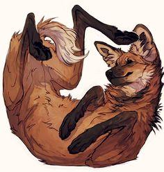 Ideas For Fantasy Art Wolf Illustrations Animal Sketches, Animal Drawings, Cute Drawings, Drawn Art, Fox Art, Pretty Art, Creature Design, Furry Art, Art Inspo