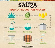 Do you want to know how to make tequila? Here we break it down the traditional process of making tequila. See how agave is planted and made into tequila. How Is Tequila Made, How To Make Tequila, Purple Cocktails, Bourbon Cocktails, Mezcal Tequila, Tequila Agave, Mexican Food Recipes, Gourmet Recipes, Agaves