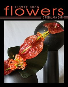 10 February 2015 - A Year in Flowers http://www.flowershowflowers.com/blog PLANT LIST Anthurium flowers & foliage Gloriosa Lily Midellino Reed