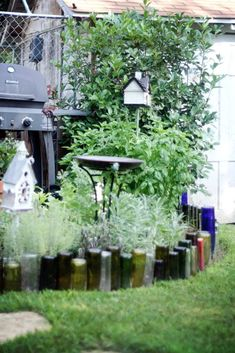 creative garden using old wine and beer bottles for borders