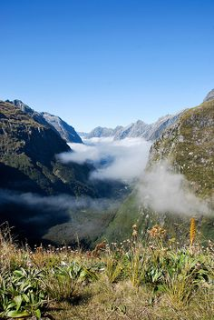 Clinton Valley, Milford Track, Fiordland, New Zealand. Photo: Chris Murphy