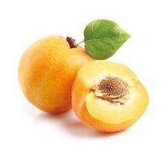 Morela - Prunus armenaca 'Hungarian Best'