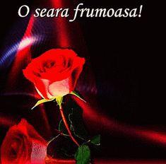 Clara Alonso, Good Night, Jesus Christ, Movie Posters, Beautiful, Instagram, Letters, Google, Bible