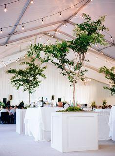 Elegant white decor & hanging string lights: http://www.stylemepretty.com/little-black-book-blog/2015/09/03/classic-southern-cheekwood-botanical-gardens-wedding/ | Photography: Bamber Photography - http://bamberphotography.com/