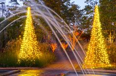 The Tunnel Fountain continues to be a guest favorite during Holidays at the Garden 2014 at Daniel Stowe Botanical Garden. Photo by Craig McCausland.