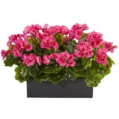 Nearly Natural Indoor/Outdoor UV Resistant Pink Geranium Silk Plant in Rectangular Planter – The Home Depot - Modern