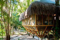O bambu foi escolhido como sistema construtivo para este albergue ecológico por ser um material farto na região, localizada em Morro de São Paulo, na Bahia