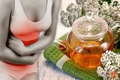 A natural healing herb and a known uterine tonic, yarrow is all you need to alleviate the debilitating endometriosis symptoms. Endometriosis Symptoms, Natural Healing, Get Healthy, Health And Beauty, Natural Remedies, Health Care, Herbs, Treats, Witch