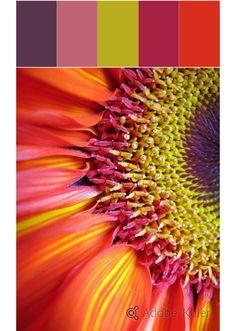 summer flowers dEc design E casa