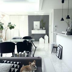 mi-さんの、Overview,グリーン,犬,ハンドメイド,アクセントクロス,DIY,手作りライト,グレー,小さなお家は犬のトイレと収納についての部屋写真