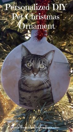Pet photo DIY Christmas ornaments from the clay ornaments you find at the craft stores (I purchased these off at Hobby Lobby) and Mod Podge. What an easy way to capture your beloved fur baby. Photo Christmas Ornaments, Clay Ornaments, Christmas Photos, Christmas Diy, Christmas Decorations, Holiday Decor, Holiday Crafts, Holiday Ideas, Christmas Balls