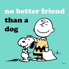 No better friend than a dog.