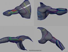 3D Character (Tips  Tricks): TOPOLOGY
