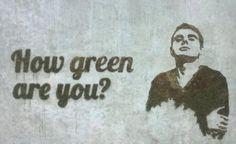 Moss wall art graffity