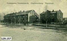 Charlottenberg Tiedemanns tobaksfabrik brukt 1917