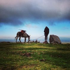 Going for a walk could save the world : The seaside donkey is a tiny adventure writ large. Starting in May 2013 I headed off around Wales, with Chico the eccentric donkey for company. The 1000-mile perimeter of Wales took five-and-a-half months to walk, and the blogs on this website tell the tale.