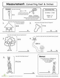 Spring Math: Measurement Worksheet